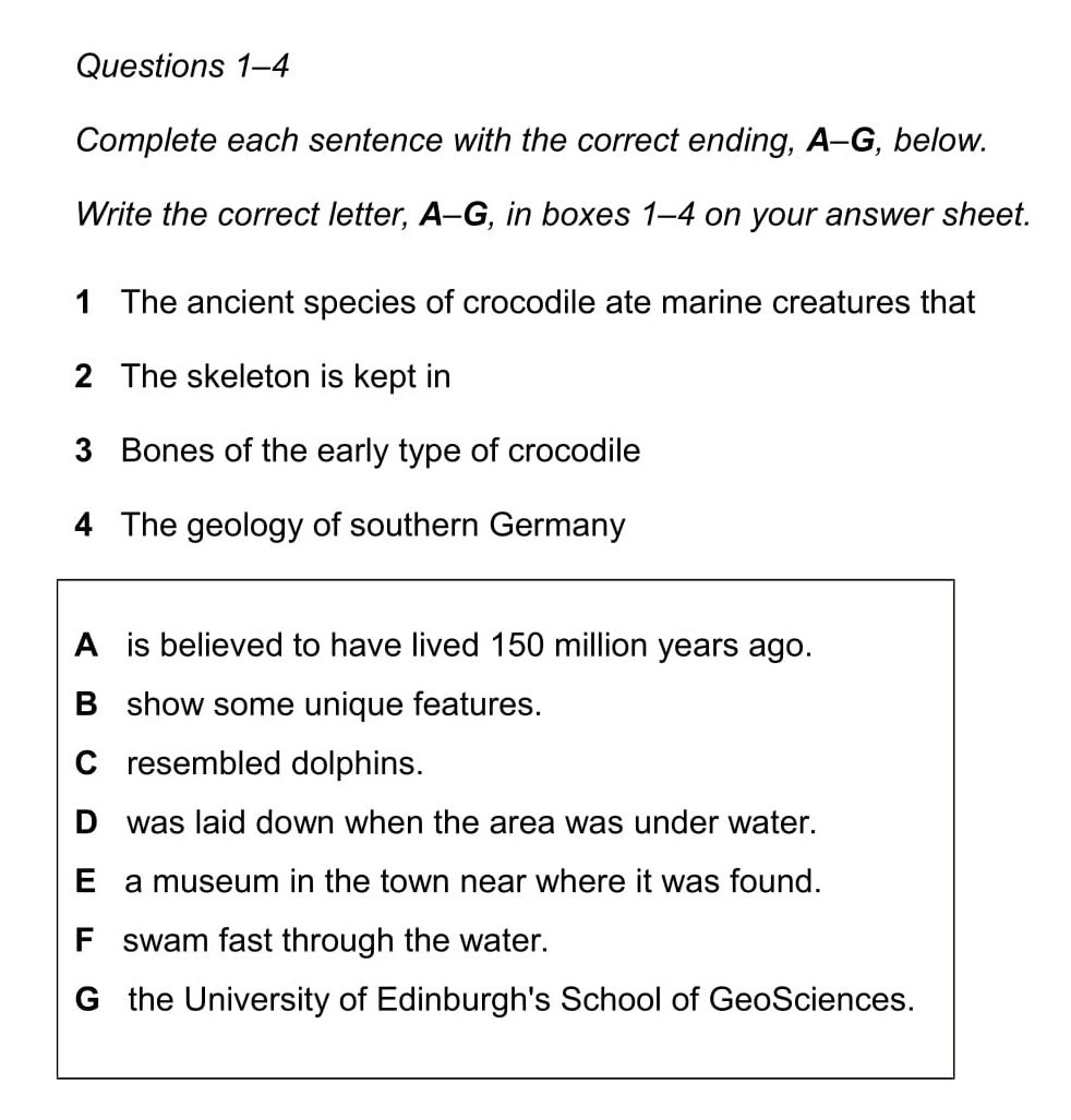 English essay topics for class 8